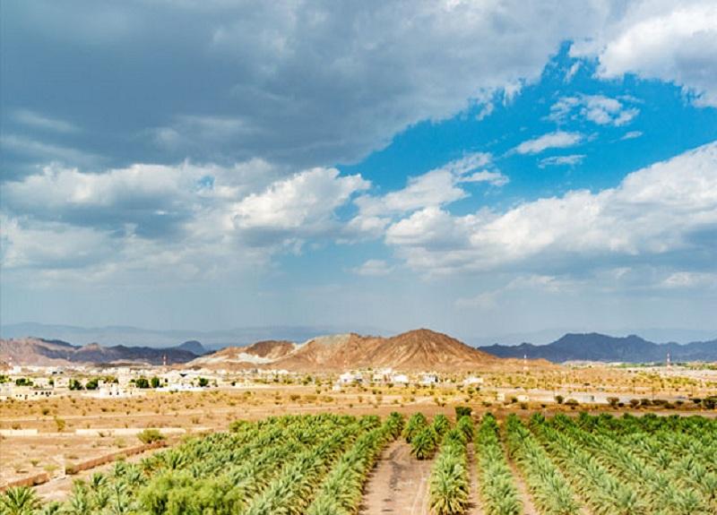 Eid Getaways Within Oman | Travel Plan for Eid Holiday in Oman